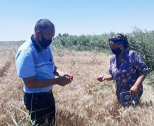 UzLiDeP activist, farmer Mrs. Palzada has been patronizing 45 families living in Kegeyli district for three months