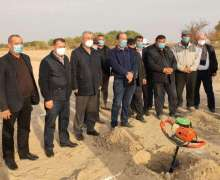Industrial grapes planted on a thousand hectares in Ellikkala